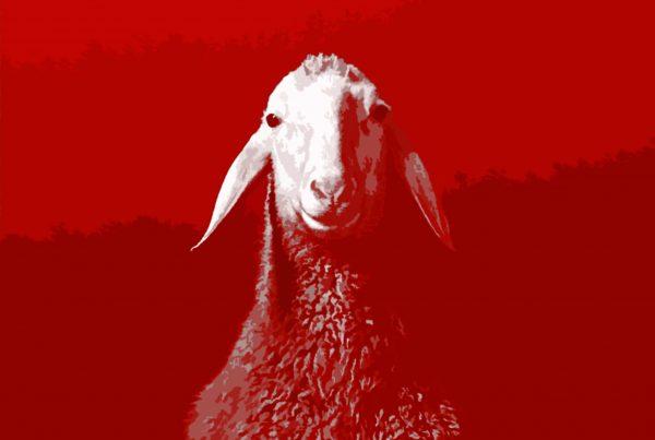 spring-offensive-sheep_v2
